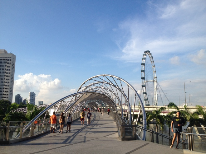 singapore flyer taken from Marina bay building complex