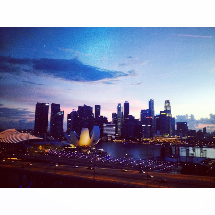 the view from the top of Singapore flyer